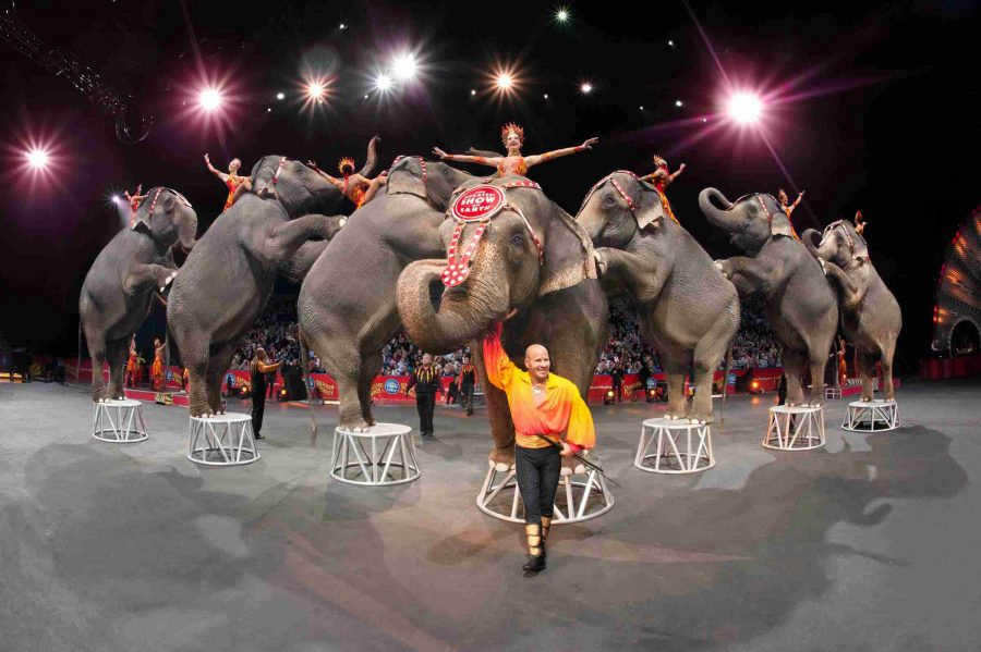 Ringling+Bros.+and+Barnum+%26amp%3B+Bailey%2C+present+%22Built+To+Amaze%21%22