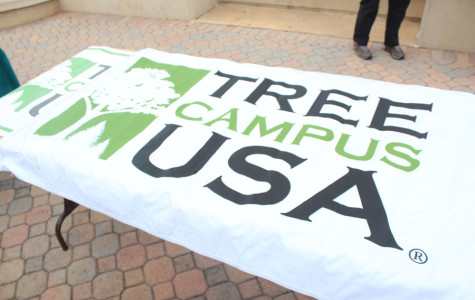 Arboreal advocacy at Valencia, tree planting on Osceola campus
