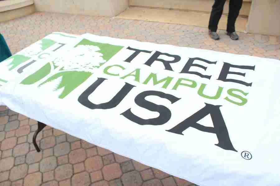 Arboreal advocacy at Valencia, tree planting on Osceola campus