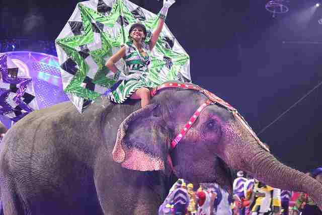 Latest+is+still+%27the+greatest%27+as+Ringling+Bros.+circus+amazes+