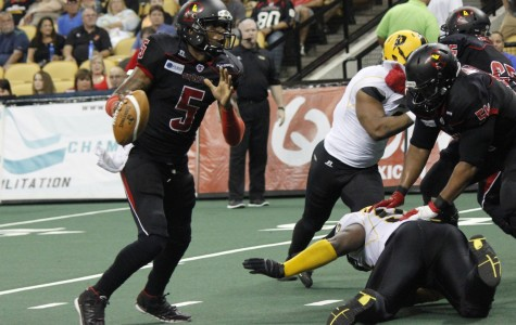 Quarterback Bernard Morris threw for five touchdowns and ran in another three in the Predators loss to the Pittsburgh Power.