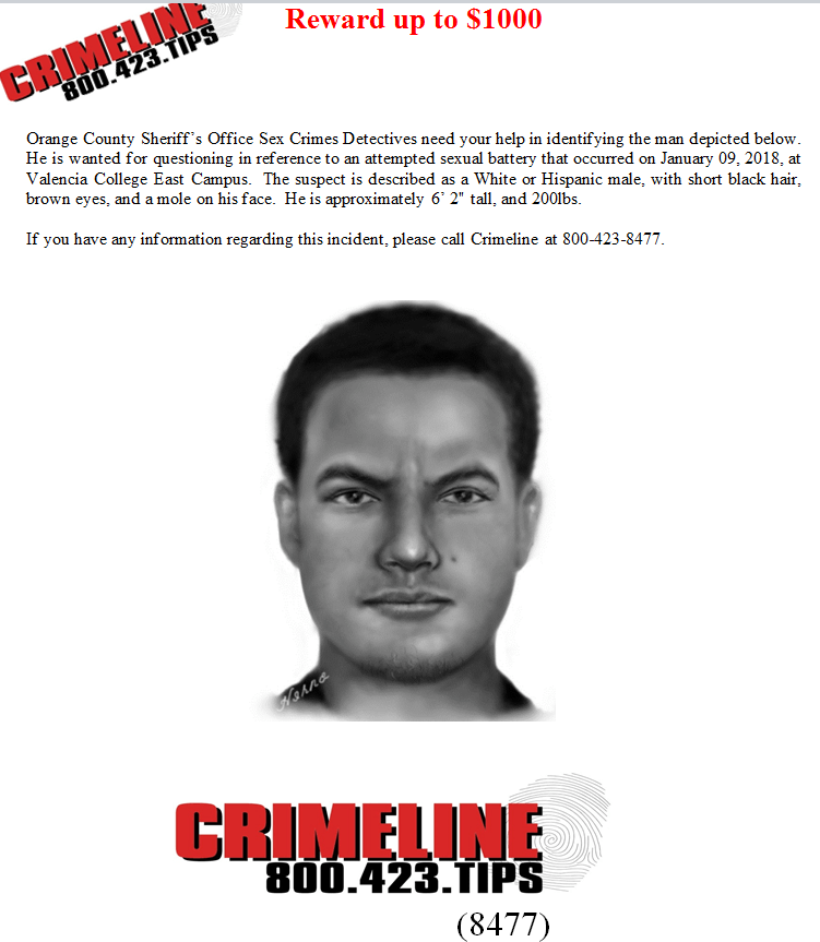 Sketch of the suspect, released by the Orange County Sheriff's Office.