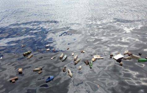 Plastic litters the ocean.