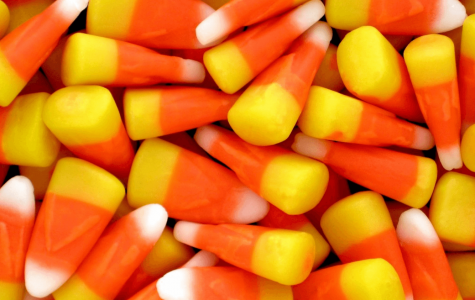 Valencia Students Share What Happens to Their Halloween Candy