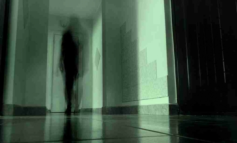 shadowy figure in hallway