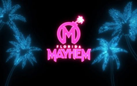 The Mayhem's new color scheme going into the OWL's third season. Photo from Florida Mayhem.
